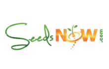 Seeds Now | A client of Ratna Technology